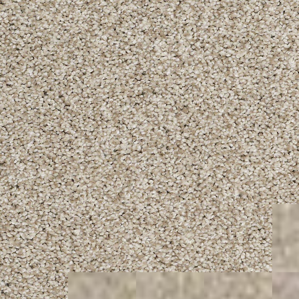 Textured carpet flooring shaw silver texture tonal for Carpet flooring