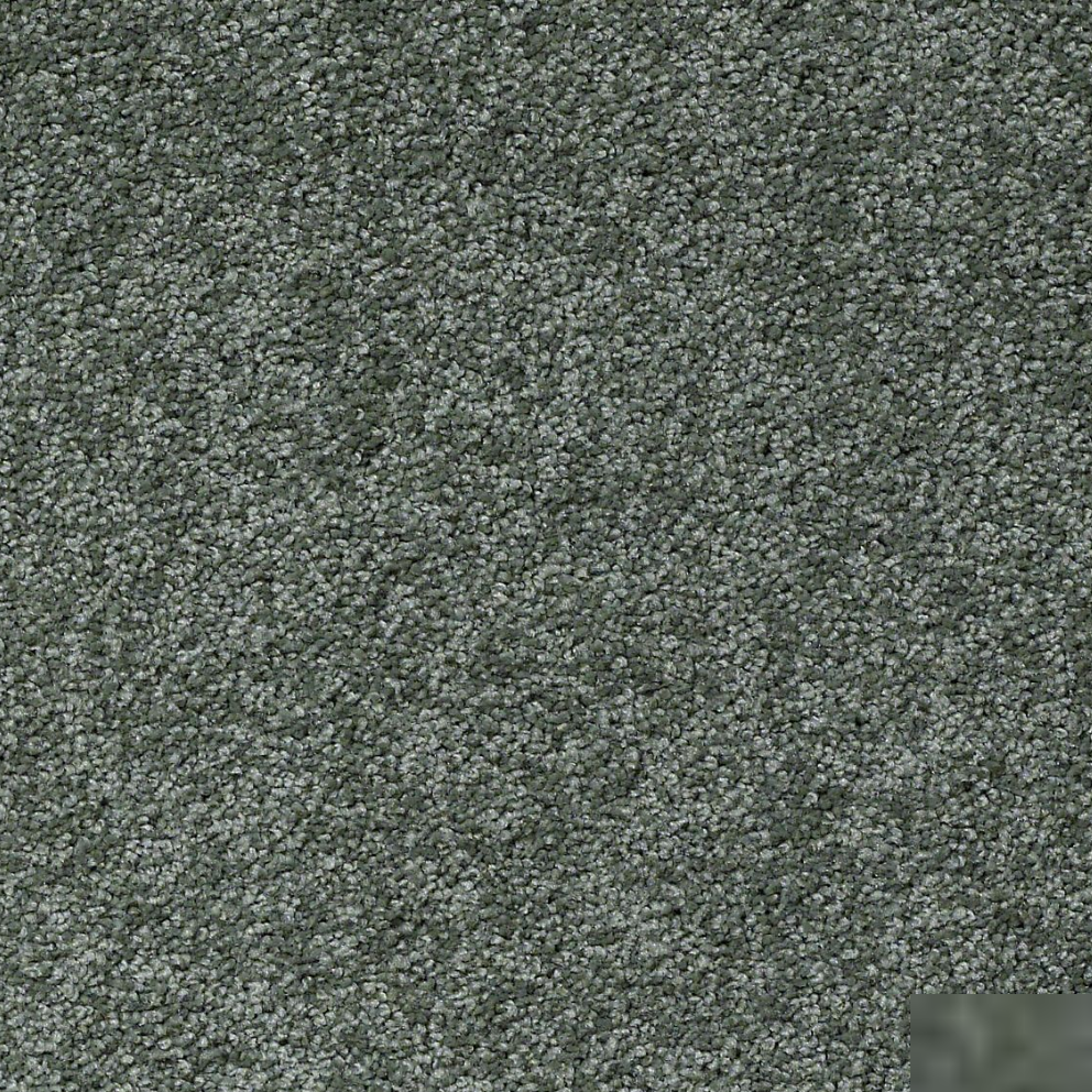 Textured Carpet Flooring Shaw Platinum Texture 12