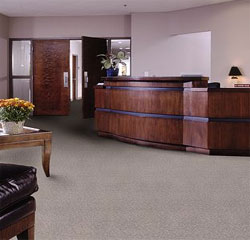 Commercial Carpet Flooring Surrey Carpet Centre Factory
