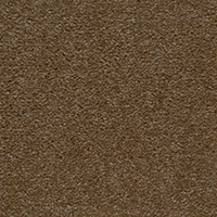 Textured Carpet Flooring Peerless Breton Iii Collection