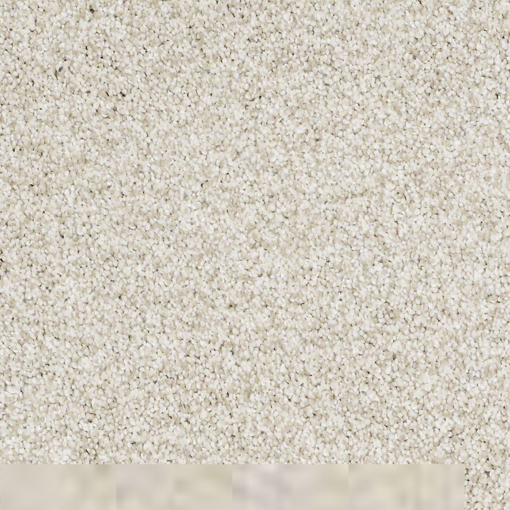 Textured Carpet Flooring Shaw Denali Texture Surrey
