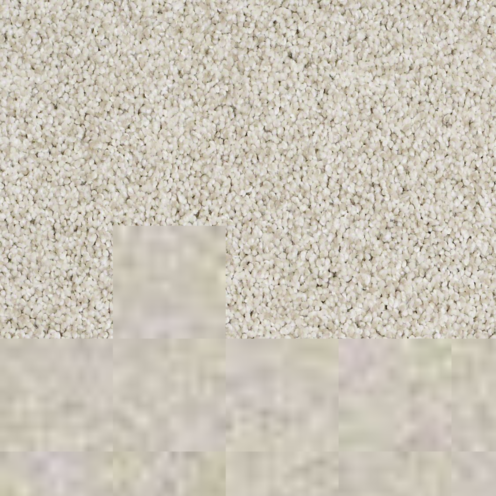 Textured Carpet Flooring u2013 Shaw GOLD TEXTURE TONAL : Surrey Carpet Centre Factory Direct