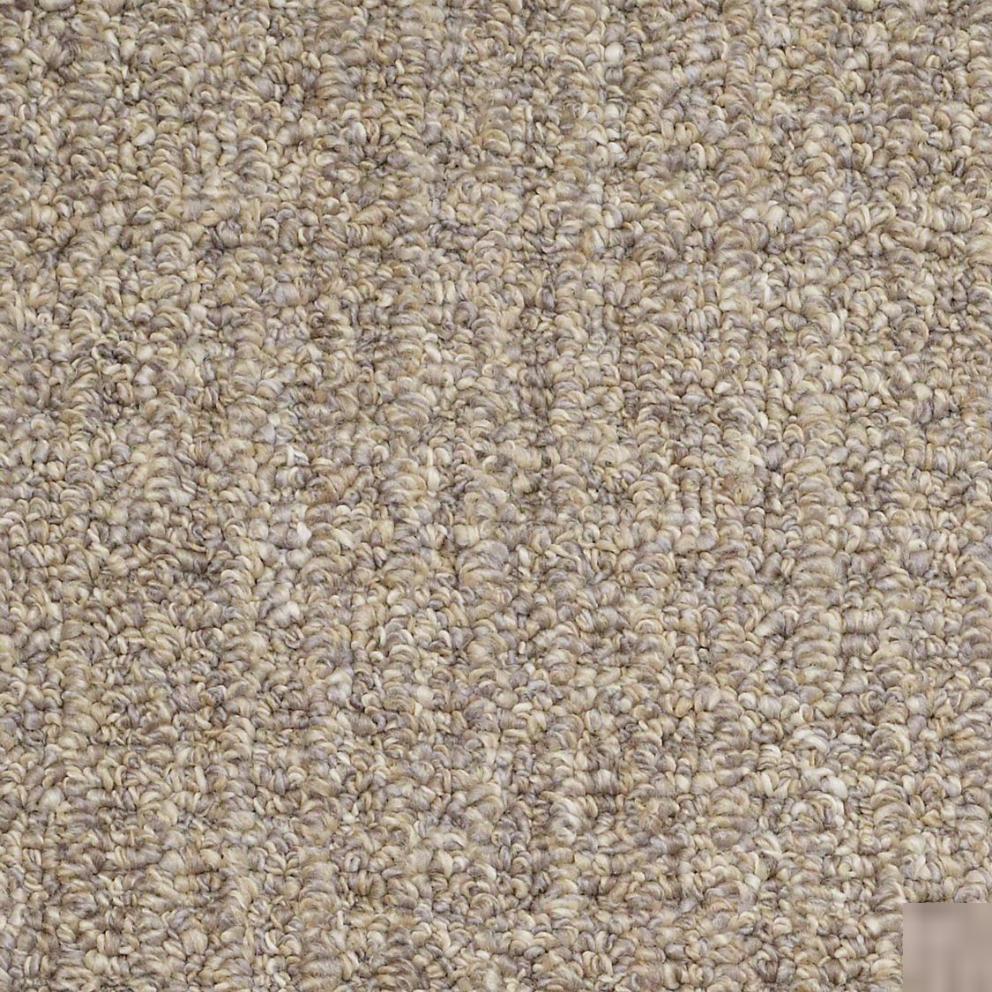 Berber Loop Carpet Flooring Shaw True Confidence
