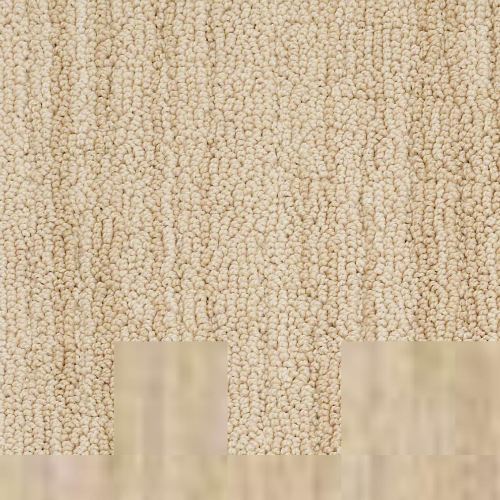 Shaw Living Berber Sand Loop 12 In X 12 In Carpet Tiles