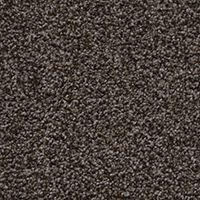 Textured Carpet Flooring Peerless Zen Garden Ii P4399