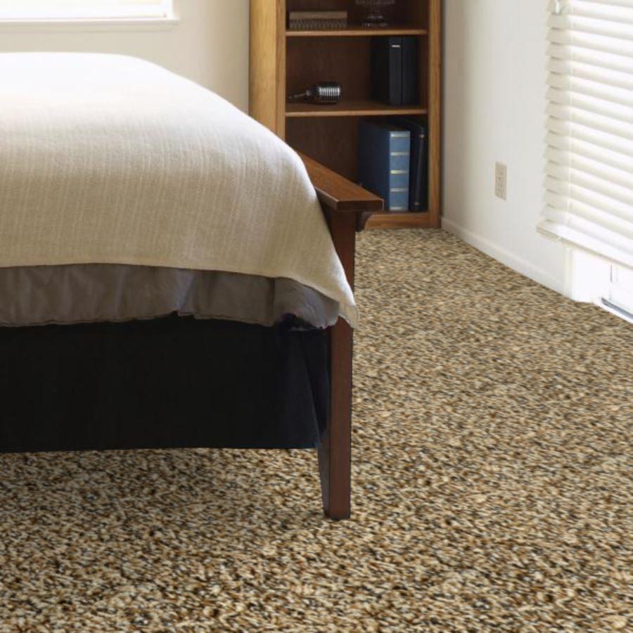 Textured Carpet Flooring – Dreamweaver Cosmopolitan ...