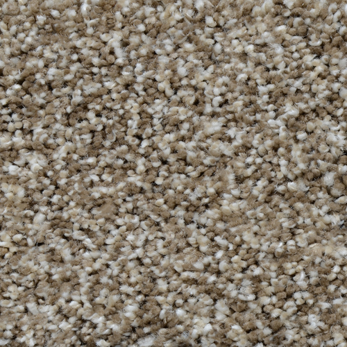 Textured Carpet Flooring Dreamweaver Cosmopolitan