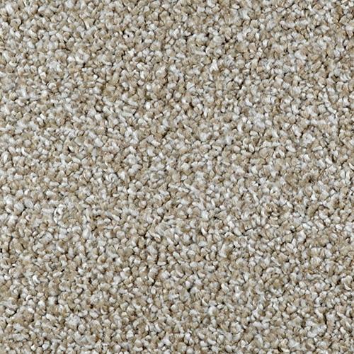 Textured Carpet Flooring Dreamweaver Distinction