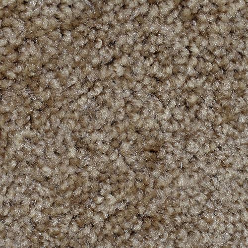 Textured Carpet Flooring Dreamweaver First Step Solid