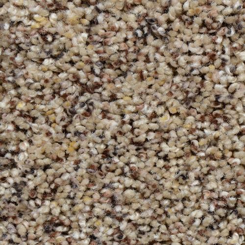 Textured Carpet Flooring Dreamweaver Kaleidoscope