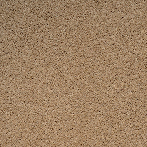Textured carpet flooring dreamweaver tranquility for Where is tranquility flooring made