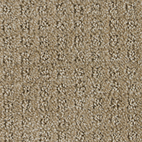 Pattern Carpet Flooring Peerless Dingo D1816 Surrey