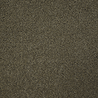 Textured Carpet Flooring Peerless Doberman D4808