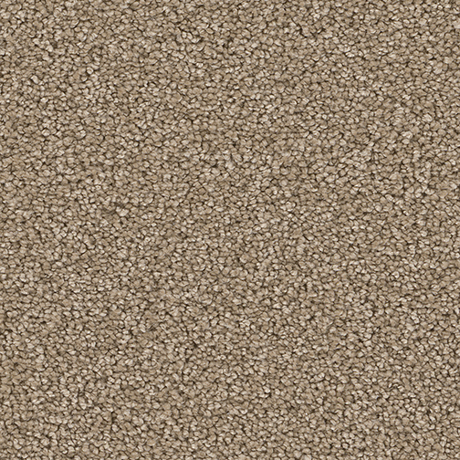 Pattern Carpet Flooring Dreamweaver Cape Cod Surrey