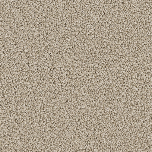 Textured Carpet Flooring Dreamweaver Boca Surrey