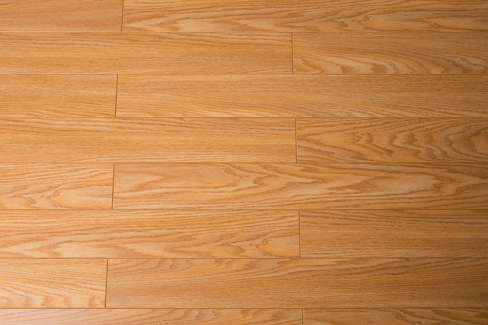 Laminate Flooring Tri Forest Toucan Collection Matte Finish
