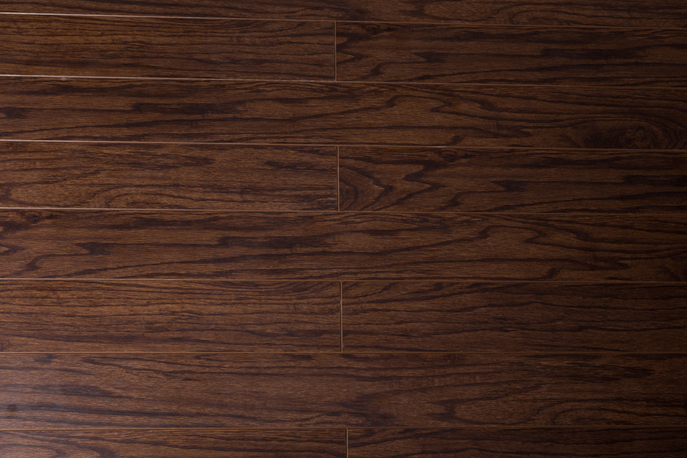 Laminate Flooring Tri Forest Toucan Collection Matte